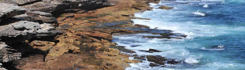 Coastal Fonrt Realty